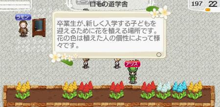 alice-flower.jpg
