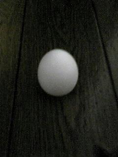 080624_1859~01.JPG