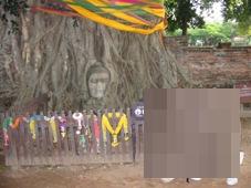 2日目 タイ・バンコク旅行【世界遺産】アユタヤ遺跡