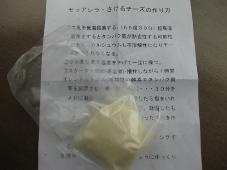 発掘「てっぺん 宗谷探検隊」工房レティエ チーズ作り体験