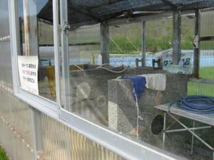濁川温泉 小型犬専用 天然温泉「ドックラン ワンダ風呂」