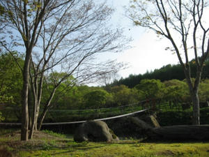 上の湯温泉『温泉旅館銀婚湯』野天風呂巡り 吊り橋