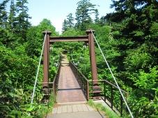 利尻島 姫沼 橋