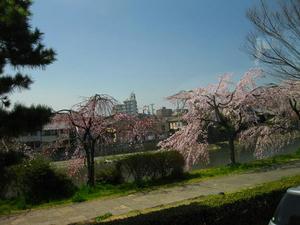 京都市内 鴨川通り