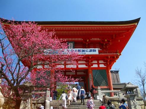 京都 清水寺/仁王門