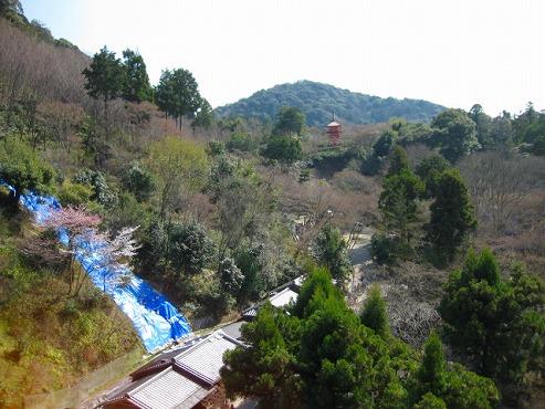 京都 清水の舞台から見る眺め