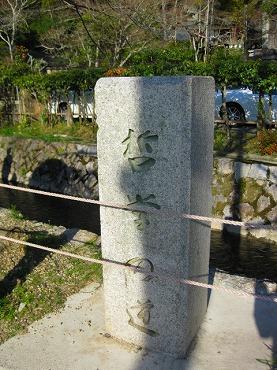 京都 哲学の道に咲く桜