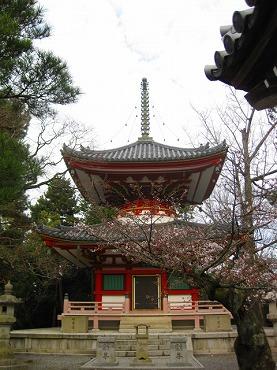 京都 知恩院/多宝塔