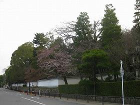 京都 知恩院/神宮道