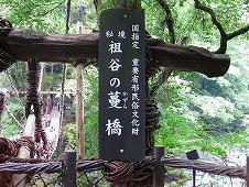 四国旅行/祖谷渓・かずら橋