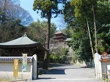 広島県 福山/明王院