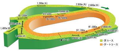 中山競馬場の全体の立体図