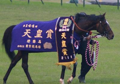 産経大阪杯の出走馬情報―秋の天皇賞を制したトーセンジョーダン