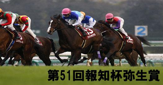 第51回報知杯弥生賞