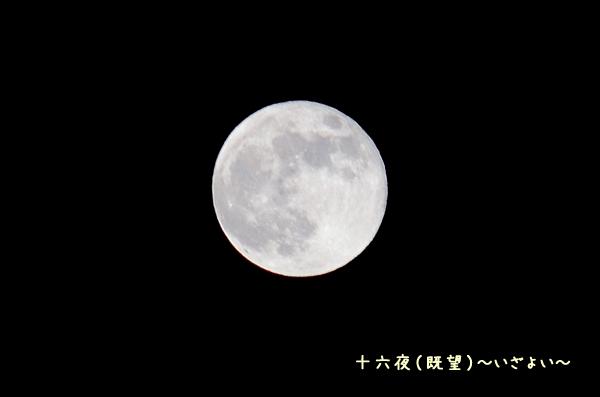十六夜(既望)~いざよい~
