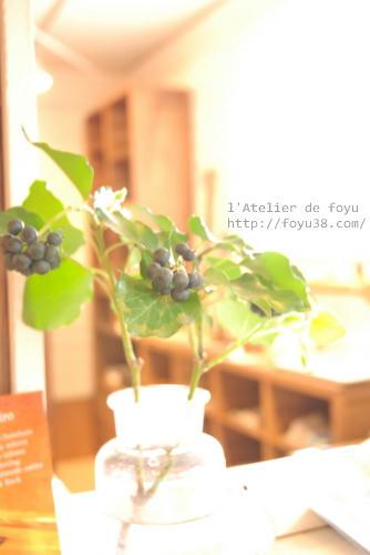 100416h_f04.jpg