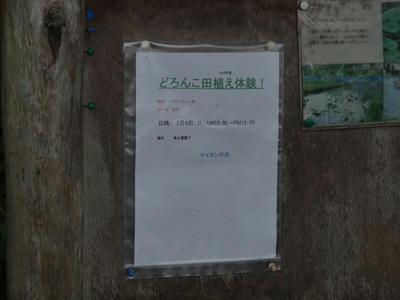 DSC06499_R.JPG