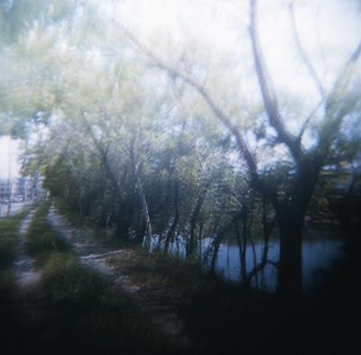 小道の写真