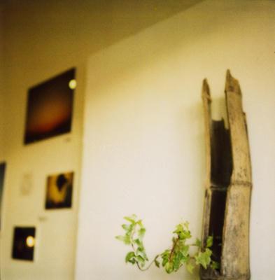 個展の写真