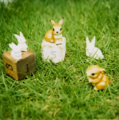 サイコロとウサギの写真