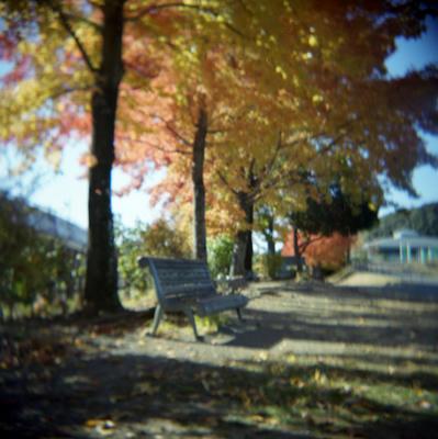 秋の日の写真