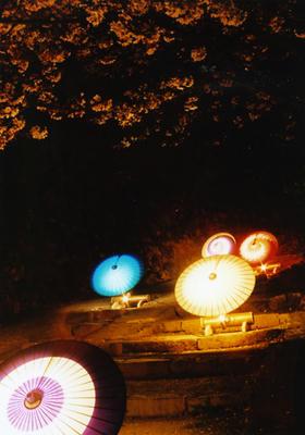 和傘の写真