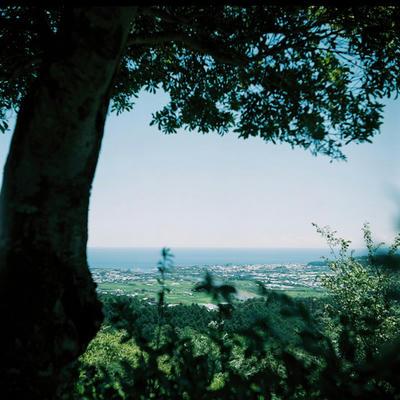 風の丘の写真