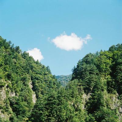 スーパー林道の写真