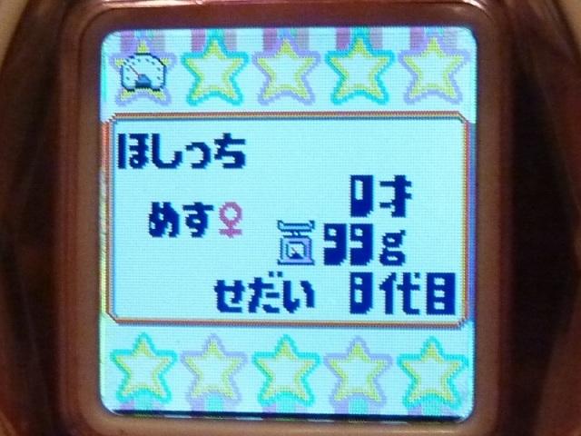 10_0213_6.jpg