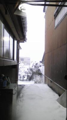 冬の窓の外