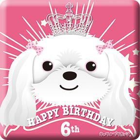 lala_shimada_birthday06.jpg