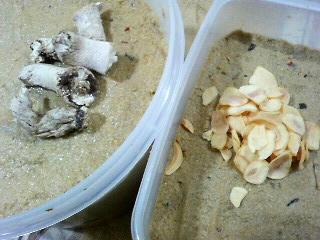 干し椎茸の軸と乾燥にんにく投入。