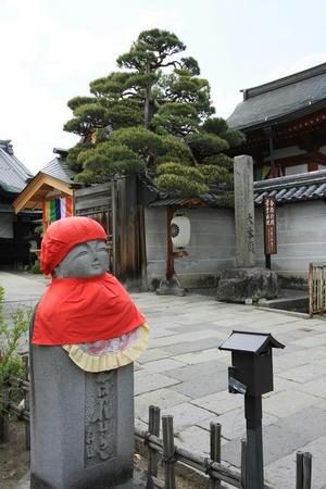 zennkouji508-6.JPG