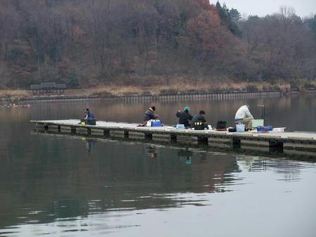 2008_1217wakasagi0005.JPG