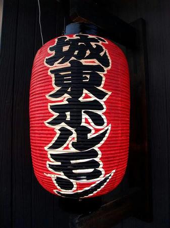 2009_0410jyoutouhorumon0030.JPG