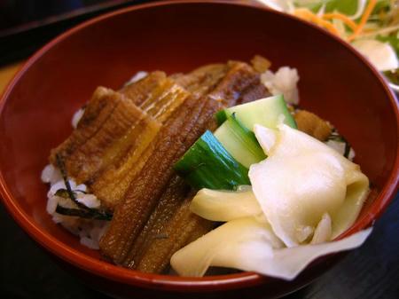 寿し割烹 桃乃木 穴子丼