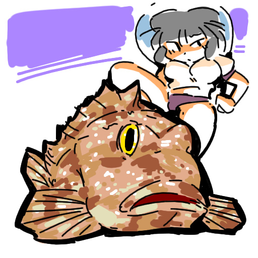 bloomers ブルマ marbled rockfish