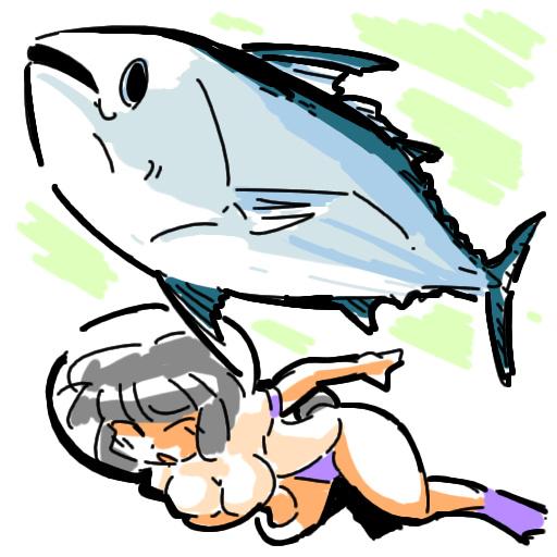 bloomers ブルマ Skipjack tuna