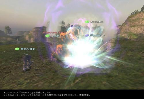 2008101206.jpg