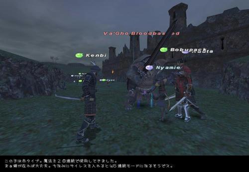 2008110503.jpg