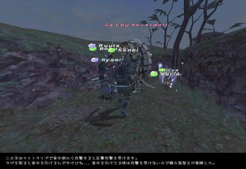 2008110504.jpg