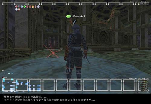 2008111810.jpg