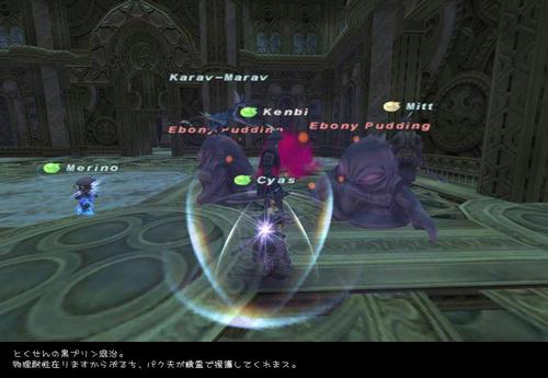 2009011302.jpg