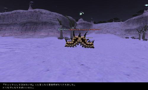 2009103001.jpg