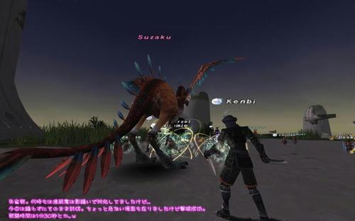 2010101403.jpg