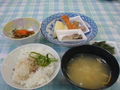 今日の試食