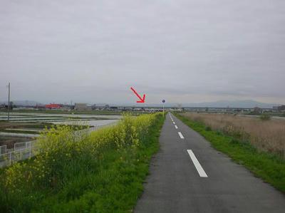新舗装されたサイクリングロード