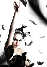 blackSwan_008.jpg