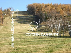 DSCF3205.jpg