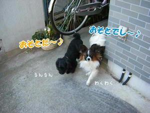 DSCF7257_0001.jpg